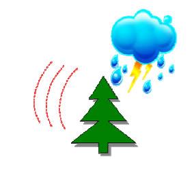 Lightning striking a tree (animation)